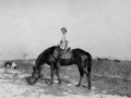 girl_on_horseback_tw